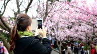 Woman holding smart phone video