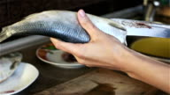 A woman holds a fish in the hand and cuts it with a knife video