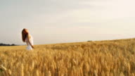 HD: Woman In A Wheat Field video