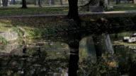 Woman in autumn park video