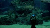 Woman in oceanarium with sharks video