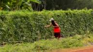 Woman  in the garden video