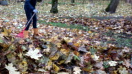 Woman in yellow boots raking fall leaves with red rake in garden. FullHD video