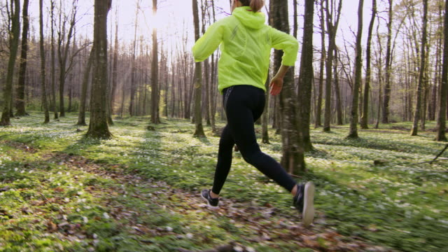 SLO MO TS Woman jogging in a spring forest video