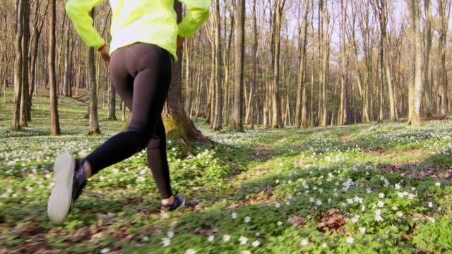 SLO MO TS Woman jogging through a forest video