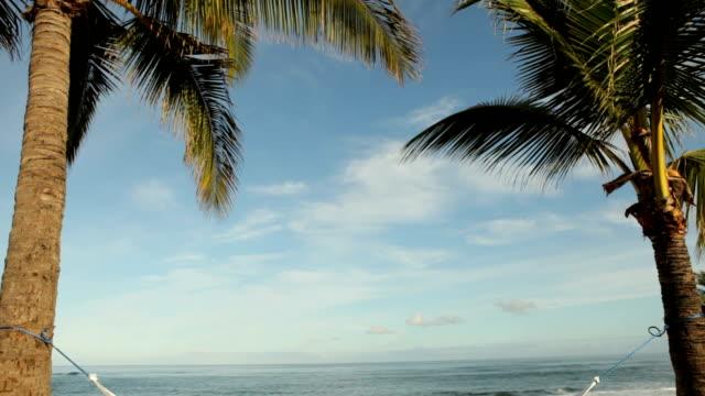 Woman laying in hammock on tropical island video