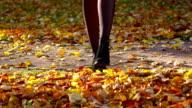 Woman legs walk on autumn leaves, toss up yellow foliage video