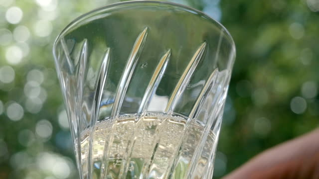 Woman Lifts Crystal Stemware Filled with Sparkling Wine video