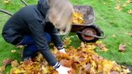 woman load barrow leaves video