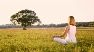 DS Woman meditating in nature video