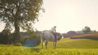 SLO MO Woman on a horse by the tree video