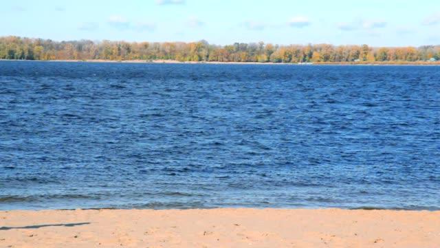 Woman on autumn sandy beach runs from river video