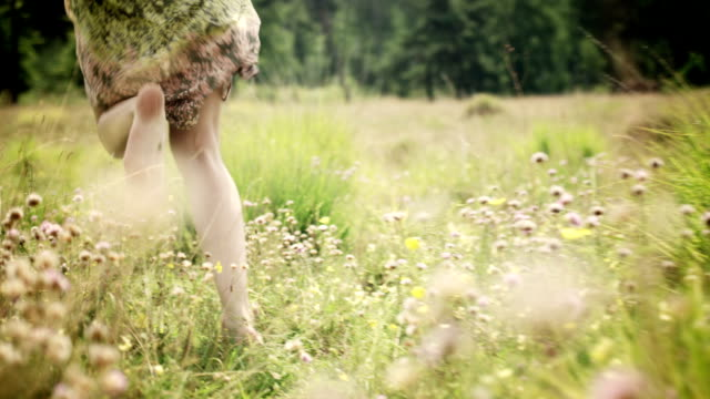 Woman on meadow video