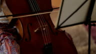 Woman playing the double bass. video