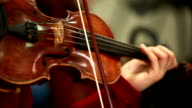 Woman playing the violin. Bowed string instrument in the orchestra. video