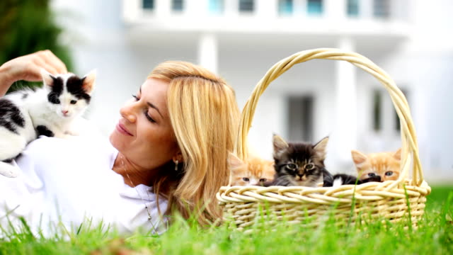 Woman playing with cats. video
