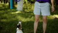 Woman playing with dog in Park video