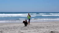 Woman playing with her dog on the beach video