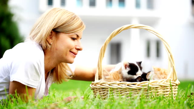 Woman playing with little cats. video