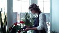 Woman polish leaves of flowers video