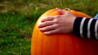 Woman put hand on bright yellow pumpkin video