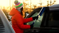 Woman remove snow and ice from car video