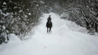 Woman riding a horse in the winter forest video