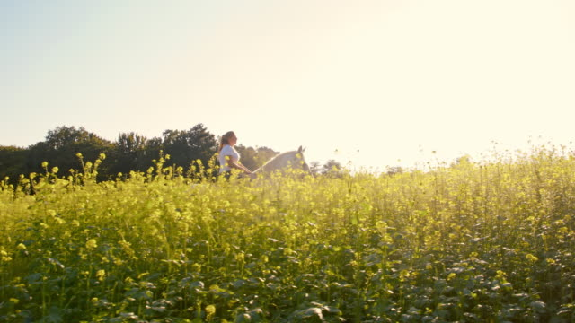 Woman riding horse in canola field video