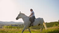 SLO MO Woman riding horse in field video