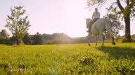 SLO MO Woman riding horse in meadow video