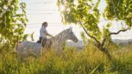SLO MO Woman riding horse through a vineyard video