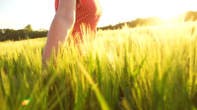 HD SUPER SLOW MO: Woman Running In Field Of Wheat video
