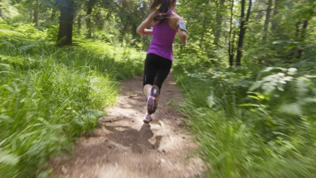 SLO MO TS Woman running on a forest path video