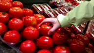 Woman selecting field tomatoes in grocery store video