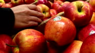 Woman selecting red apple in grocery store produce department video