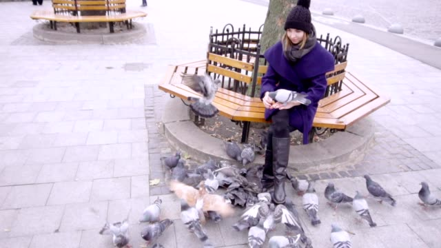 A woman sits on a bench and feeds pigeons video