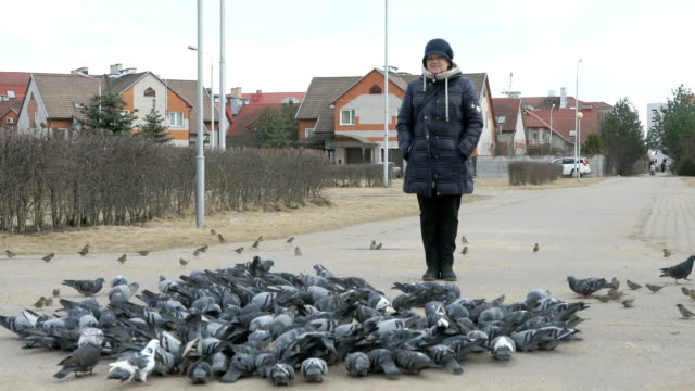 Woman stands next to flocks of pigeons in park video