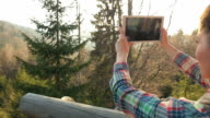 Woman taking pictures in nature. video
