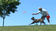 Woman throws plastic disc to dog, slow motion video