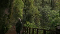 Woman Tourist Walking Through Forest video