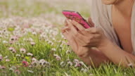 DS Woman typing a sms in the grass video
