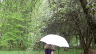 woman umbrella garden video