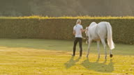 SLO MO Woman walking a horse early in the morning video
