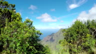 CLOSE UP: Woman walking along the jungle mountain path in sunny Hawaii video