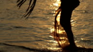 Woman walking along the surf line. Sunset on the ocean. Beautiful View On Ocean Background Through The Palm Branches. Slow motion. video