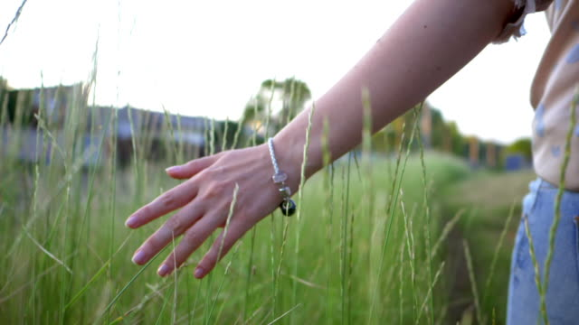 Woman walking and touching long grass in field in summer. slow motion. Beautiful background video