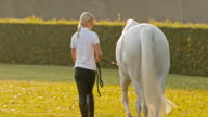 SLO MO Woman walking around with a white horse at sunrise video