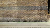 Woman walking in front of a brick wall video