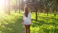 Woman walking in the forest at sunset. Slow motion video