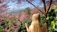Woman Walking Through a Forest video